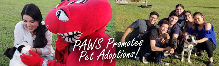 PAWS Promotes Pet Adoptions2